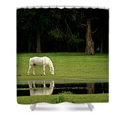 Flooded Field In May Shower Curtain