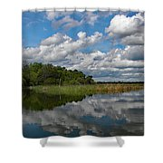 Flooded Low Country Rice Field Shower Curtain