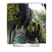 Flora Gardens 173 Shower Curtain