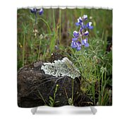 Flora On The Plateau Shower Curtain