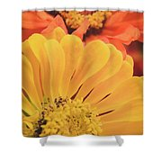 Floral 17 Shower Curtain