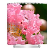 Floral 4 Shower Curtain