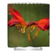 Floral Abstract Shower Curtain