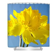 Floral Art Bright Yellow Daffodil Flowers Baslee Troutman Shower Curtain