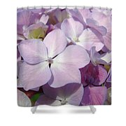 Floral Art Hydrangea Flowers Purple Lavender Baslee Troutman Shower Curtain