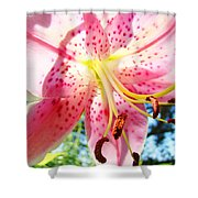 Floral Art Print Pink Summer Lily Flower Lilies Baslee Troutman Shower Curtain