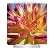 Floral Art Prints Bright Dahlia Flower Canvas Baslee Troutman  Shower Curtain