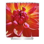 Floral Art Prints Orange Pink Dahlia Flower Baslee Troutman Shower Curtain