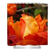 Floral Art Prints Orange Rhodies Rhododendrons Baslee Troutman Shower Curtain