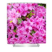 Floral Art Prints Pink Azalea Garden Landscape Baslee Troutman Shower Curtain