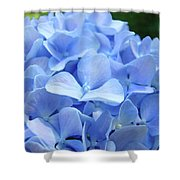 Floral Artwork Blue Hydrangea Flowers Baslee Troutman Shower Curtain