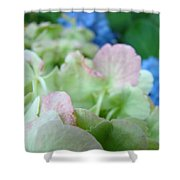 Floral Artwork Hydrangea Flowers Soft Nature Giclee Baslee Troutman Shower Curtain