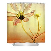 Floral At Dusk Shower Curtain