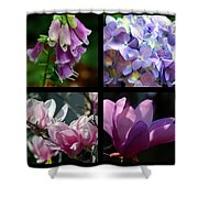 Floral Beauties Shower Curtain