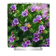 Floral Beehive Shower Curtain