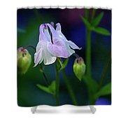 Floral Birds Shower Curtain
