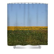 Floral Blur Shower Curtain
