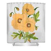 Floral Botanicals-jp3785 Shower Curtain