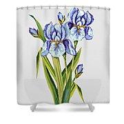 Floral Botanicals-jp3786 Shower Curtain