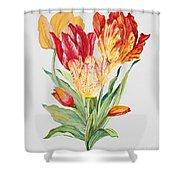 Floral Botanicals-jp3789 Shower Curtain