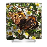 Floral Buckeye Shower Curtain