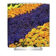 Floral Carpet Shower Curtain