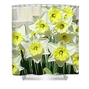 Floral Daffodils Garden Art Prints Floral Bouquet Baslee Troutman Shower Curtain