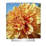 Floral Dahlia Flower Art Print Orange Red Dahlias Baslee Shower Curtain