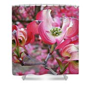 Floral Dogwood Tree Flowers Baslee Troutman Shower Curtain