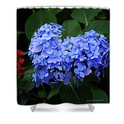 Floral Duet Shower Curtain
