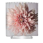 Floral Elegance Shower Curtain