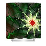 Floral Expressions 4 Shower Curtain