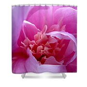 Floral Fantasy 2 Shower Curtain