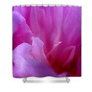 Floral Fantasy 4 Shower Curtain