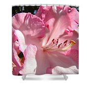 Floral Fine Art Prints Pink Rhodie Flower Baslee Troutman Shower Curtain