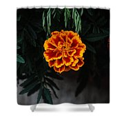 Floral Fire Shower Curtain