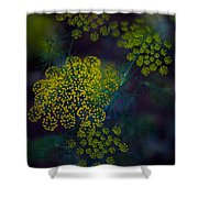 Floral Fireworks Shower Curtain