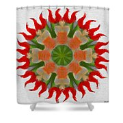 Floral Flare Shower Curtain