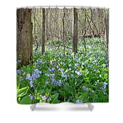 Floral Forest Floor Shower Curtain