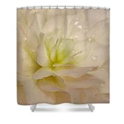 Floral Harmony Shower Curtain