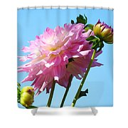 Floral Landscape Art Print Pink Dahlia Flower Blue Sky Canvas Baslee Troutman Shower Curtain