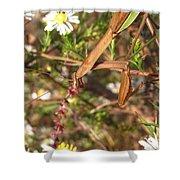 Floral Mantis Shower Curtain