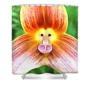 Floral Monkey Pink Yellow And Red Shower Curtain