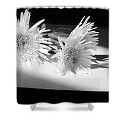 Floral No3 Shower Curtain