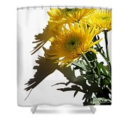 Floral No4 Shower Curtain