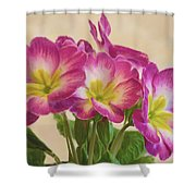 Floral Oil Painting Shower Curtain
