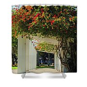 Floral Or Art Shower Curtain