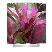 Floral Pastel Shower Curtain by Tom Prendergast