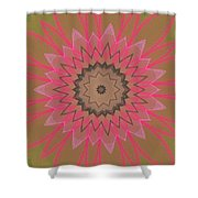 Floral Petals With Hearts Shower Curtain