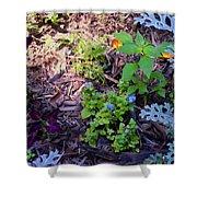 Floral Print 003 Shower Curtain